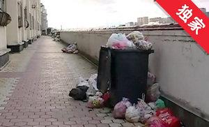 【视频】垃圾处理费收取难 小区垃圾堆成山