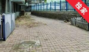 【視頻】下水管道多次淤堵 徹底維修還需居民同意