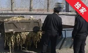 【视频】延吉:随意倾倒垃圾将被处罚款5千至3万元