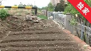 【视频】河坝变菜地 违反规定需清理