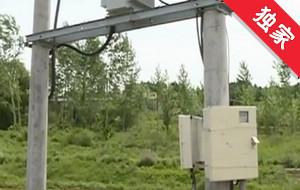 【視頻】承包地里設立電線桿 無法耕種村民著急