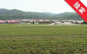 【视频】养猪场建在村中 影响村民生活盼整改