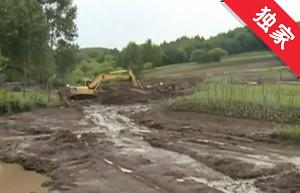 【视频】便桥排水不畅 堤坝决口农田被淹