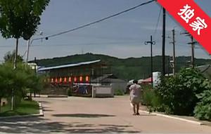 【视频】整治环境发展村集体经济 带领村民致富