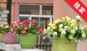 【視頻】往昔臟亂小村 今日美麗鄉村