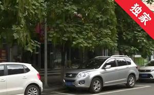 【视频】树木过高 居民生活受影响