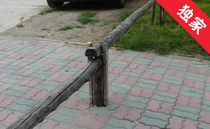 【視頻】居民私設欄桿 影響出行社區協調拆除