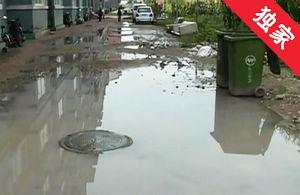 【视频】下水管道堵塞返水 维修工作亟待开展