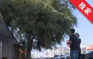 【視頻】大樹修剪不及時 門市經營受影響