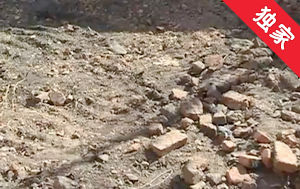 【視頻】拆除煙囪卻砸壞菜地 記者協調雙方達成和解