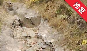 【視頻】機耕道破損嚴重 村民秋收遇難題