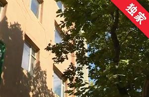 【视频】树木茂盛遮挡窗户 居民家中难见光