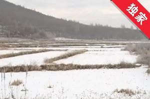 【视频】集体土地建房屋 村民对此有意见