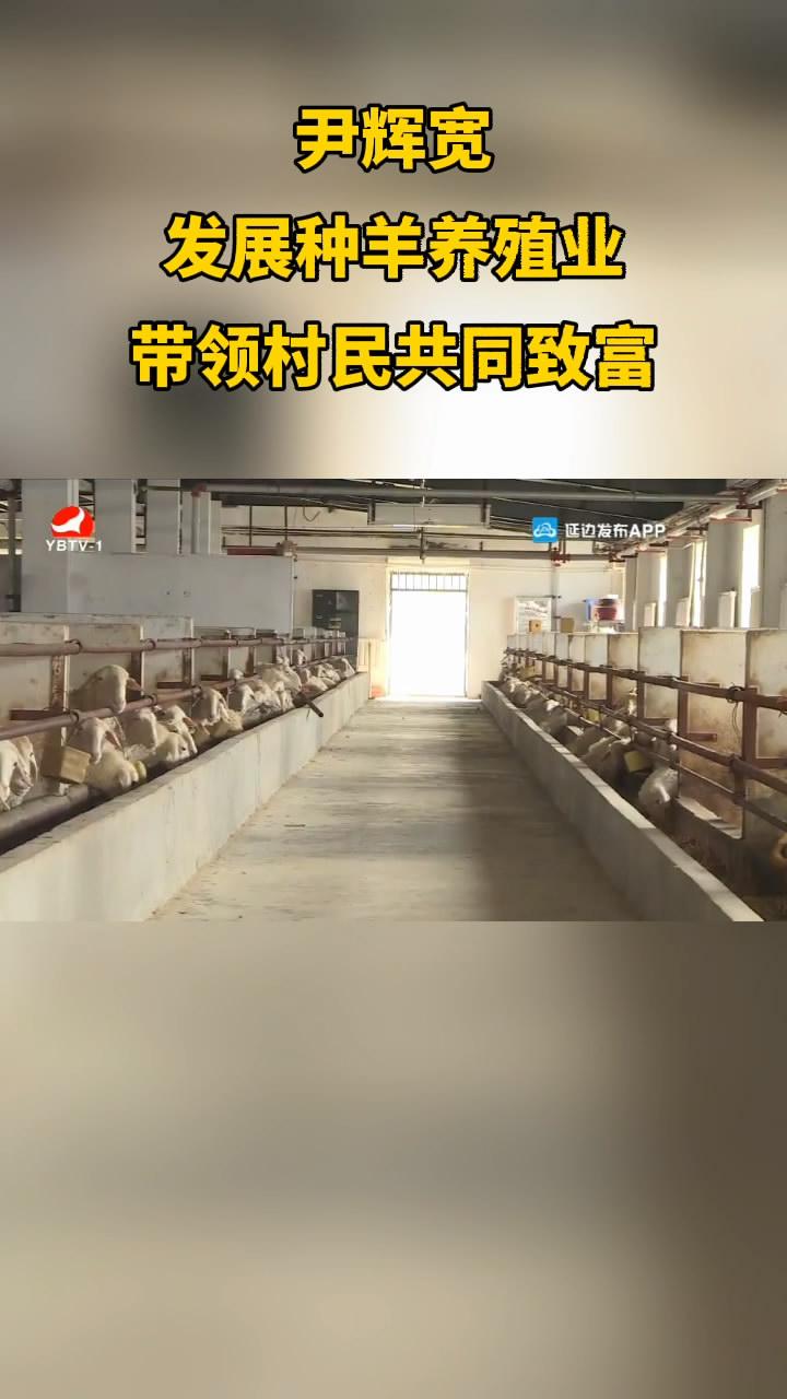 【微视频】尹辉宽:发展种羊养殖业 带领村民共同致富