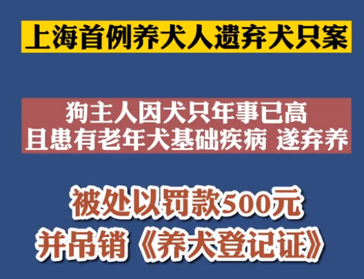 【微视频】上海首例养犬人遗弃犬只案