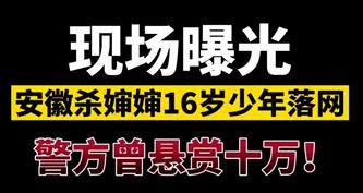 【微视频】优游杀婶婶16岁少年落网,警方曾悬赏十万!