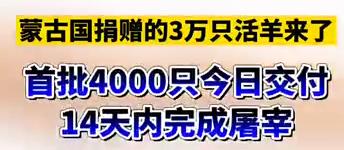 【微视频】蒙古国捐赠的3万只活羊来了!首批4000只今日交付