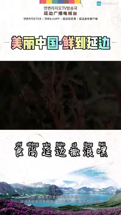 #美麗中國鮮到延邊 #食尚延邊撒浪嘿 #幸福吉林 #看見延邊 美麗中國·鮮到延邊!傳統打糕,綿軟香甜!