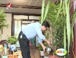 生活广角2016-5-30