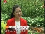天南地北延边人2016-06-18