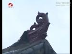 生活广角 2016-11-07