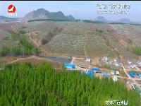 【航拍视频】龙井万亩果园