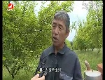 生活广角 2017-06-19