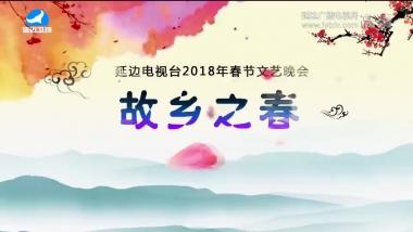 2018年春节文艺晚会第2部