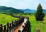 找个周末,咱们一起到敦化大石头这个小镇走走,踏踏春,可好?
