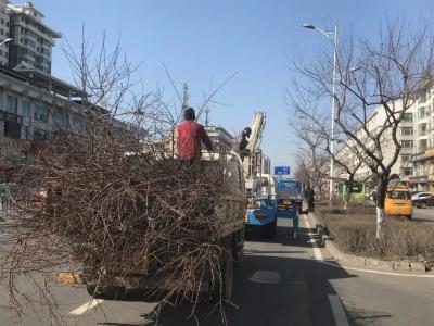 延吉市春季园林养护工作全面展开