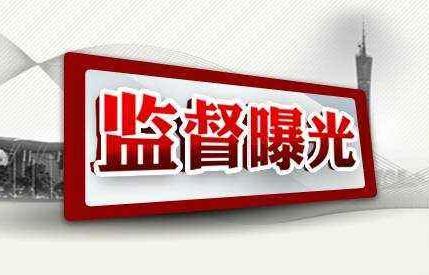 【审查调查】汪清县罗子沟镇林业工作站站长张锋接受纪律审查和监察调查