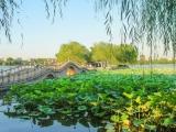 延吉朝阳川国际机场7月1日开通延吉=济南直飞航线