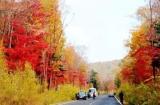 十一去延边:一路枫叶红了,花海美了,苹果熟了!