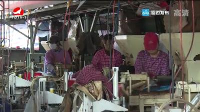 汪清县天桥岭镇打造黑木耳产业 带动地区经济发展