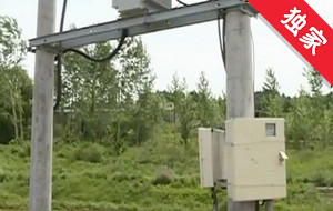 【视频】承包地里设立电线杆 无法耕种村民着急