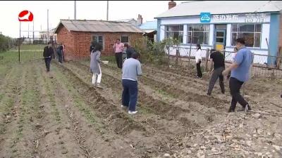 珲春市板石镇:发展庭院经济 增加农民收入