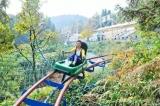刺激又好玩!高空漂流﹢林海飞龙!琵岩山又添网红打卡新地标!