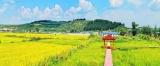 厉害!光东村/金达莱村获评首批全国乡村旅游重点村!