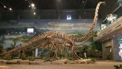 延吉恐龙博物馆外部工程基本结束
