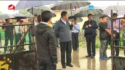 金寿浩到龙井 安图调研