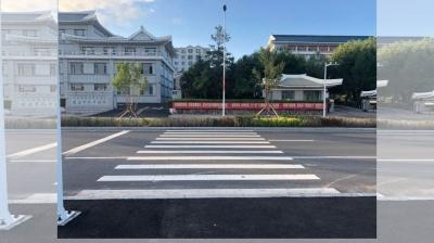 人行横道中间种树?