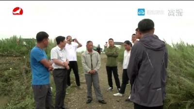 珲春500户台风受灾农户有望提前获得农保理赔金