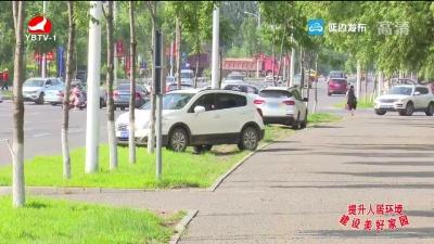 绿化带里乱停车 绿植遭破坏