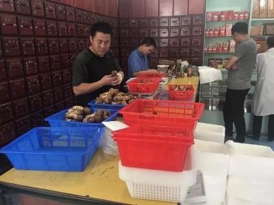 今年延边松茸产量如何,价格怎样?