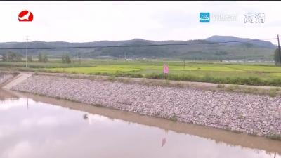 五道水库下游治理工程将于年底完工