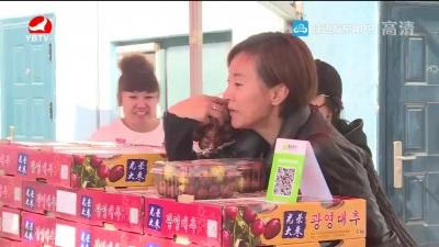李英爱:要让大枣成为朝阳川的名片