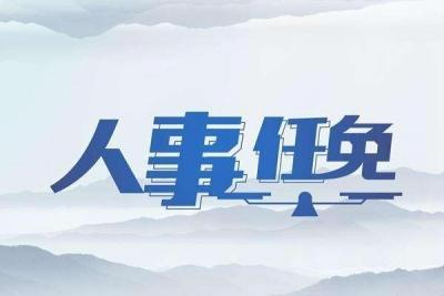 张洪东任吉林省信托有限责任公司总经理