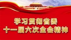 【專題】學習貫徹省委十一屆六次全會精神