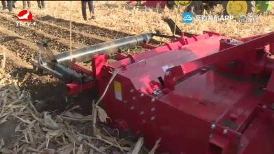 全州玉米秸稈機械化全量還田觀摩會在敦化召開