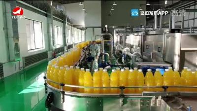 延边娃哈哈启力饮料有限公司:一流的经营理念创出一流业绩